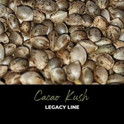 Cacao Kush - Graines de cannabis régulières - Legacy Line