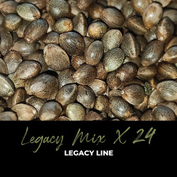 Legacy Mix x24 - Regulären Cannabissamen - Mix