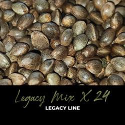 Legacy Mix x24 - Regulären Cannabissamen - Mix