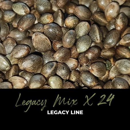 Legacy Mix x24 - Graines de cannabis régulières - Mix