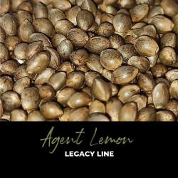 Agent Lemon - Regulären Cannabissamen - Legacy Line