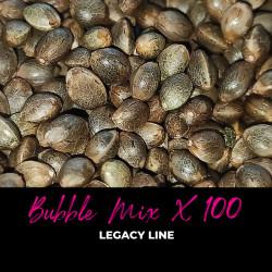 Bubble Mix x100 - Semillas de marihuana regulares - Mix