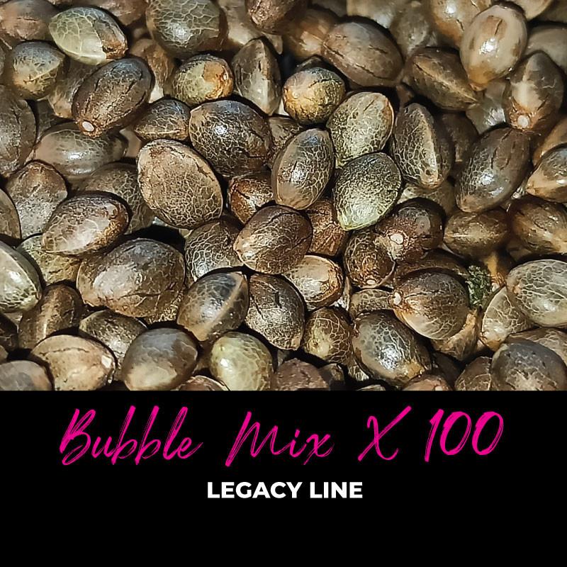 Bubble Mix x100 - Regular Cannabis Seeds - Mix