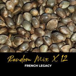 Random Mix x12 - Regulären Cannabissamen - Mix