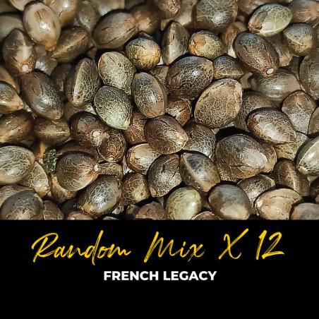 Random Mix x12 - Regular Cannabis Seeds - Mix