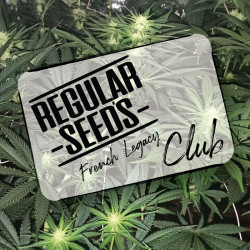 Suscríbase al club - Semillas de marihuana regulares - Club