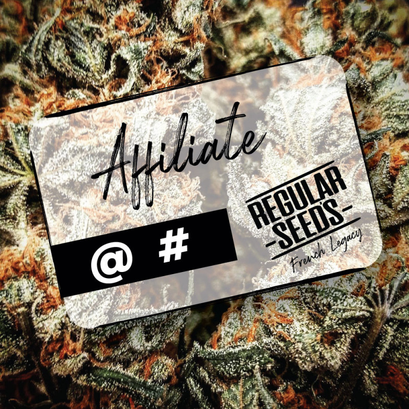 Devenir un affilié - Graines de cannabis régulières - Distribution