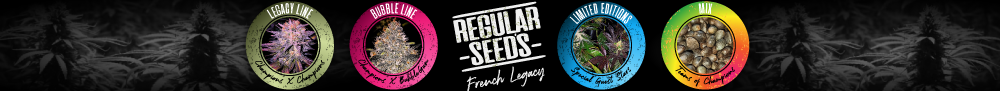 REGULAR SEED'S - French Legacy
