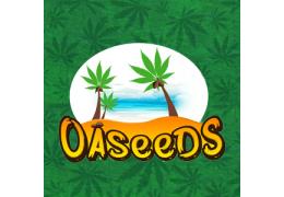 OASEEDS Cannabis Seeds